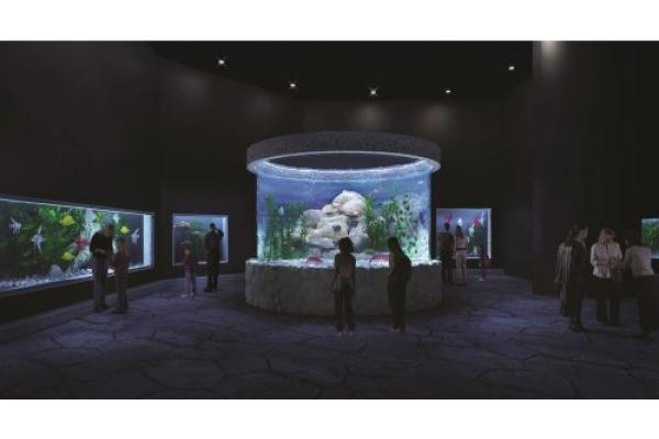 Announcing a New Unique Jerusalem Venue: Networking with the Fish in Jerusalem